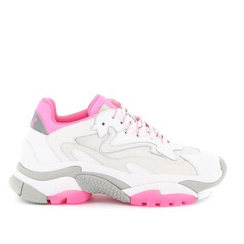 Giày Ash Addict Low-top Sneakers chính hãng
