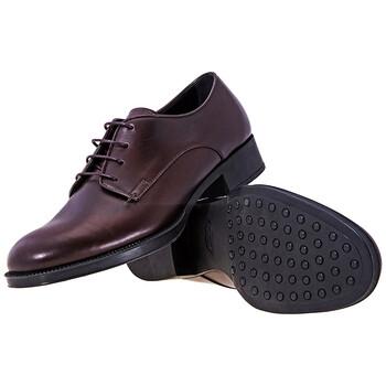 Giày Tod's nữ Derby Lace Up Shoes in Bordeaux chính hãng