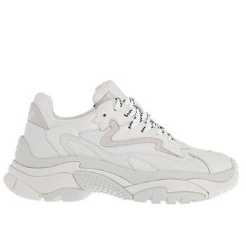 Giày Ash màu trắng Addict Low-top Sneakers