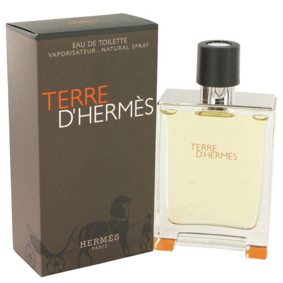 Nước hoa Terre D'Hermes Eau De Toilette EDT 100ml nam
